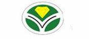 河南亚龙金刚石制品股份有限公司
